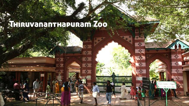 1 hr · Edited ·    Thiruvananthapuram Zoo is one among the first zoo in India, the Zoological Park in Thiruvananthapuram district of Kerala, was established in 1859.  A reptile house with different species of snakes and a vulture house are also located within the premises. The zoo is just 3km away from Thiruvananthapuram.
