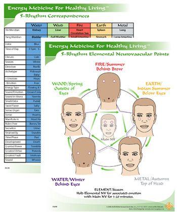 Das Elektroenzephalogramm in der Anästhesie: Grundlagen, Anwendungsbereiche,