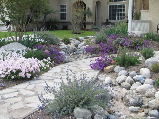 I love the look of this yard.  They replaced their entire front yard grass with plants and rocks. Very nice, I would add some bark, mulch or smaller rocks so no bare dirt shows.