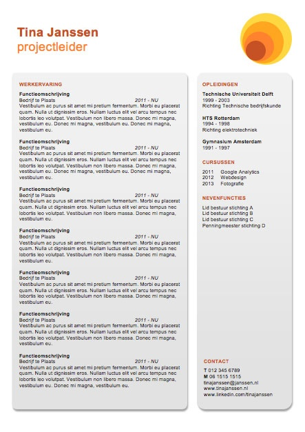 108 best Creative, Visual and Infographic Resumes images on - visual cv resume