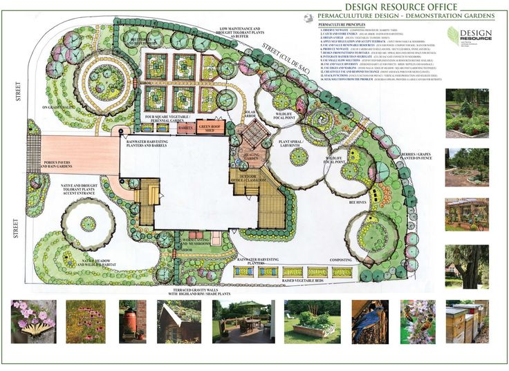 Best 25+ Permaculture design ideas on Pinterest | Permaculture ...