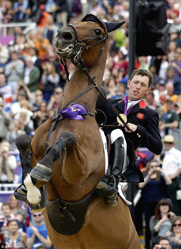 Sit tight Scott: Golden wonder: Hello Sanctos, the horse ridden by Scott Brash, rears as the crowd cheers during a victory lap after Great Britain won the gold medal for the equestrian team show jumping at London 2012.