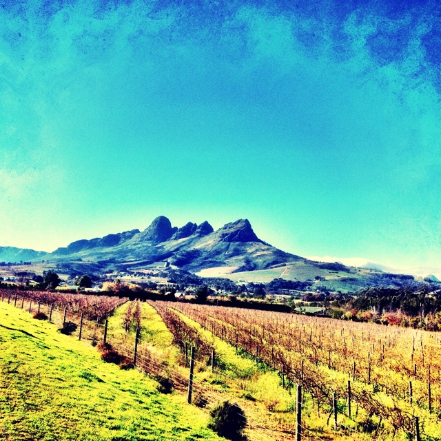 Helderberg, Somerset West, South Africa
