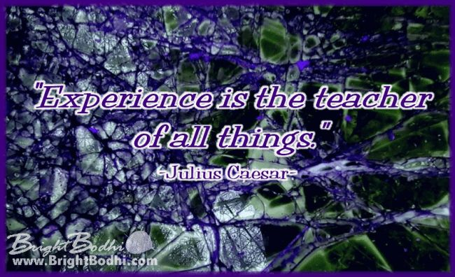 "Quotes – Bright Bodhi  ""Experience is the teacher of all things."" -Julius Caesar-"
