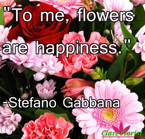 Quotes About Bouquets Of Flowers: 17 Best Images About Flower Quotes On Pinterest