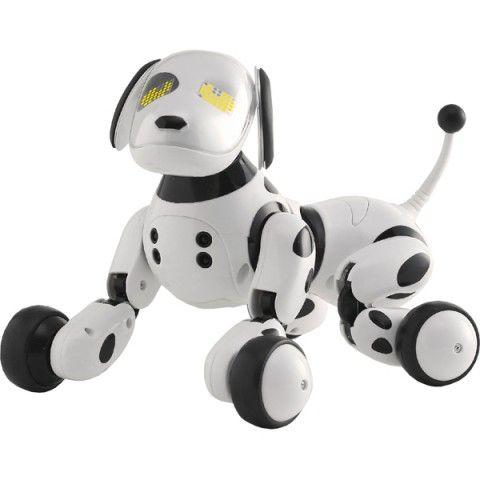 AC Gears - Takara Tomy Hello! Zoomer Robot Dog - Toys & Variety - Toys