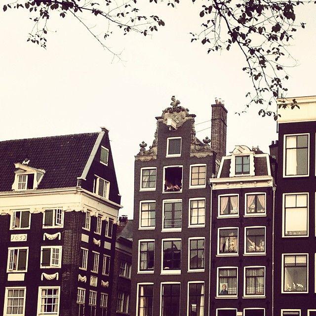 elblogdeblanqui's photo on SnapWidget