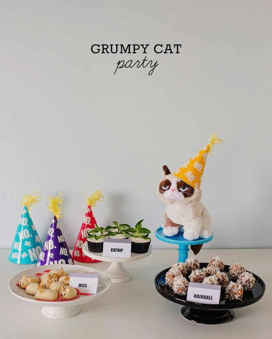 One Charming Party | Birthday Party Ideas › grumpy cat party ideas