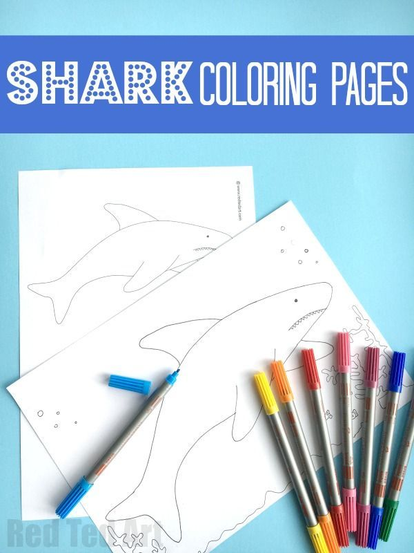 190 best Coloring Pages images on Pinterest Coloring pages - copy coloring page of a tiger shark