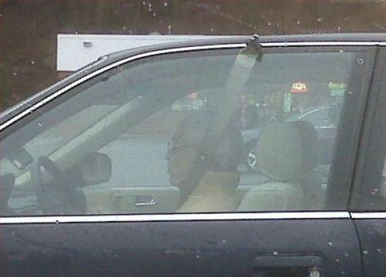 cool How a redneck fixes a broken seat belt.... | RedNeck Humor... LOL ...... by http://dezdemon-humoraddiction.space/redneck-humor/how-a-redneck-fixes-a-broken-seat-belt-redneck-humor-lol/