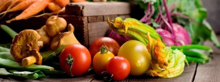 Organic green | Vi svarar på vanliga frågor om mat
