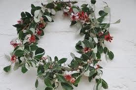 australian native christmas wreaths - Google Search