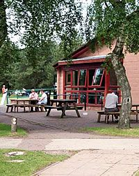 Visitors Centres Cannock Chase