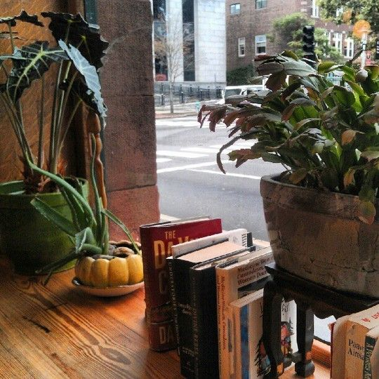 Life Alive Garden: Lessons for Indoor Planting The Gardenist: Plants Houses, Indoor Gardens, Apartment Therapy, Life Alive, Houses Plants, Brilliant Ideas, Alive Gardens, Indoor Plants, Alive Vegetarian