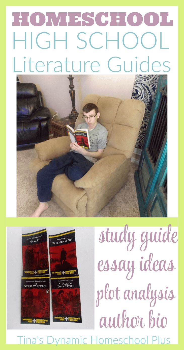 best ideas about high school reading independent homeschool high school literature guides
