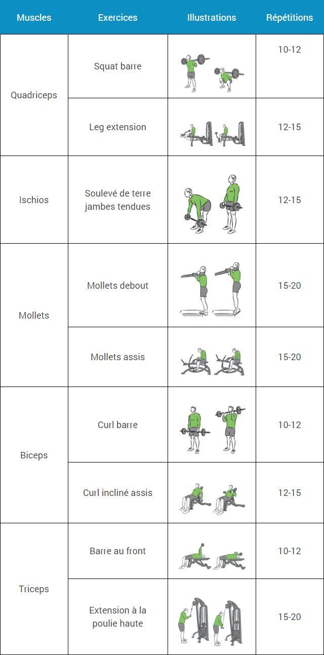 Best 25 programme musculation femme ideas on pinterest for Programme de musculation