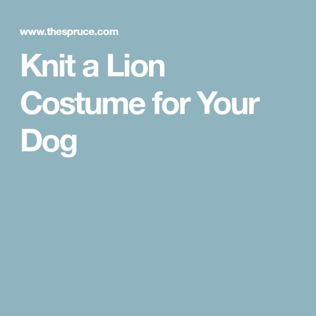 Knit a Lion Costume for Your Dog