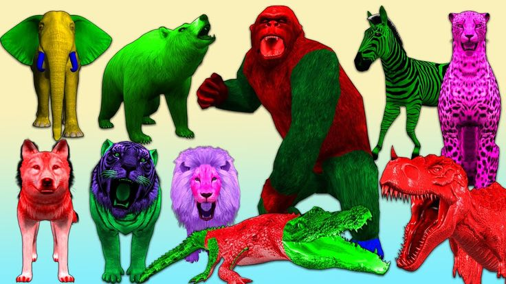Animals Names For Children To Learn Wild Animals Names For Kids  Gorilla...
