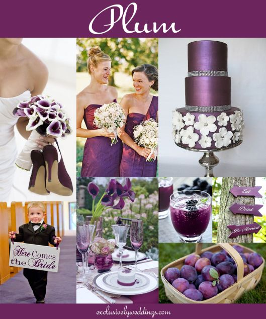 """Plum Wedding """"Your Wedding Color - Don't Overlook Five Luscious Shades of Purple"""". Read more: http://blog.exclusivelyweddings.com/2014/04/20/your-wedding-color-dont-overlook-five-luscious-shades-of-purple/"""