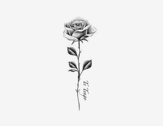 Meaningful Small Tattoos For Women Simple Small Tattoo Ideas 431655 Small Tattoo Ideas Smalltattoo In 2020 Rose Tattoos For Men Small Rose Tattoo Small Tattoos,Solution Design Group