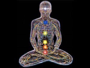 """チャクラとは? チャクラ""""とはサンスクリット語で""""車輪""""を表す言葉です。7つのチャクラは身体の中にある生命エネルギーの特殊なセンターで身体の中心線上にあり、エネルギーの流れをコントロールします。それぞれのチャクラが身体の中の内分泌系に対応し、そのバランスが整っていれば、対応する身体の部分がうまく機能します。"""