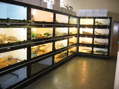 how to build stackable snake enclosures