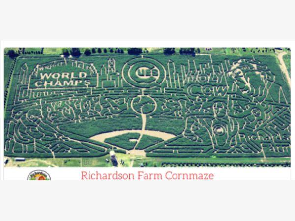 Cubs Corn Maze: 'World's Largest' Maze Pays Tribute To World Series Champs