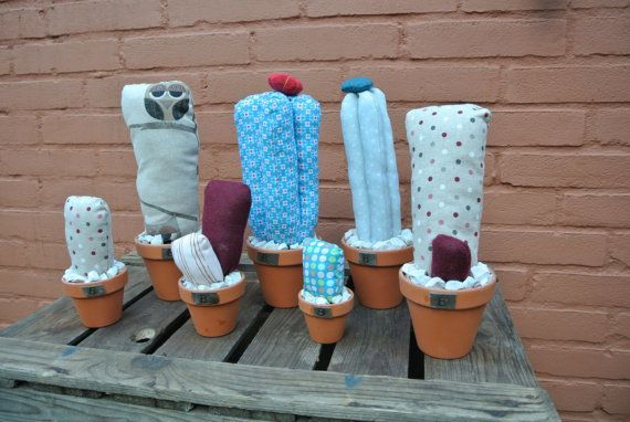 Soft Cactuses..!! Doesn't need water, only a smile :)