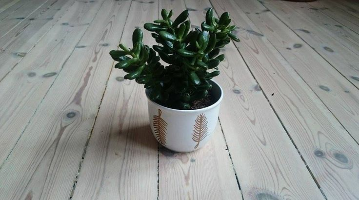 DIY flower pot. Painted copper feathers. Very easy and beautiful!