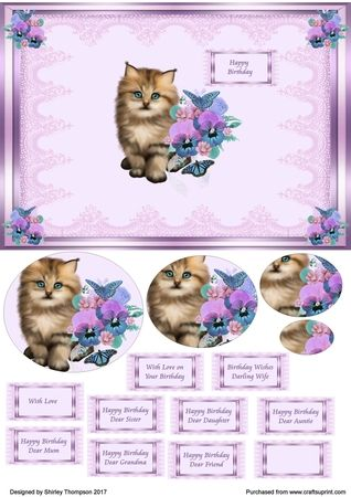 Floral Dogs and Cats 2 by Shirley Thompson: In my graphics programme I opened this gorgeous kitten image and resized it to fit my A5 card…