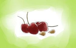 Plant Cherry Seeds/pits - grow a tree!