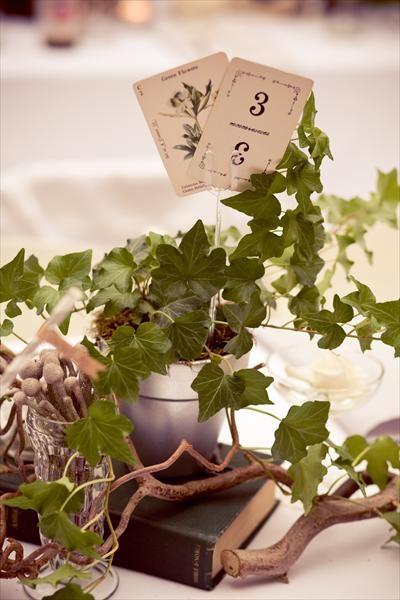 secret garden wedding reception | Jennifer + Michael - Vintage Garden Wedding - The Knot