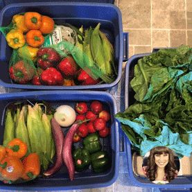 Organic Food Delivery Toronto | Vegetable, Grocery Box Delivered | Mama Earth Organics