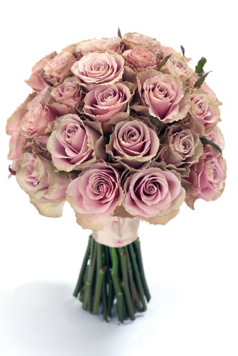 pink hand-tied bouquet of 'Old Dutch' roses... thinking of a table centerpiece