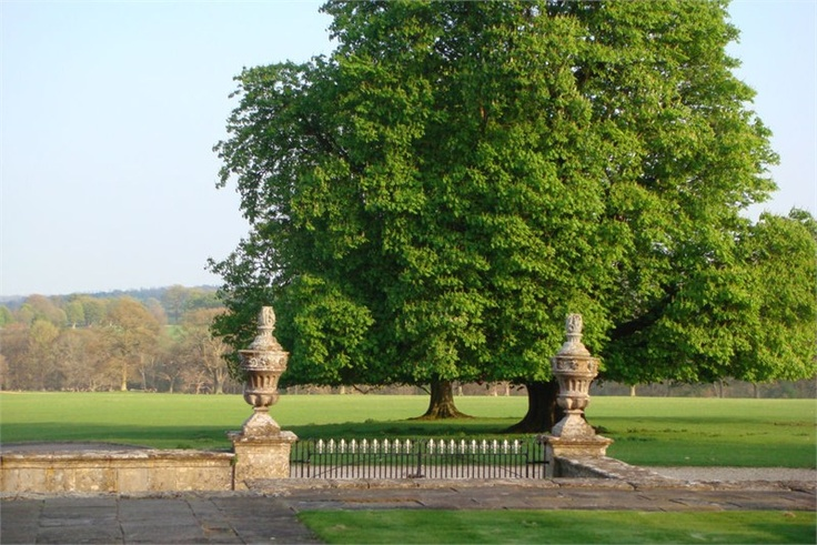 Cornbury Park, oxfordshire