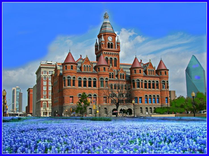Dallas County Courthouse looking out to Bluebonnets