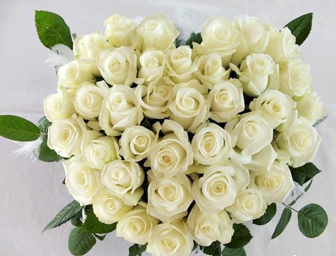 может любимой подруге с днем рождения открытки с белыми розами цветовая