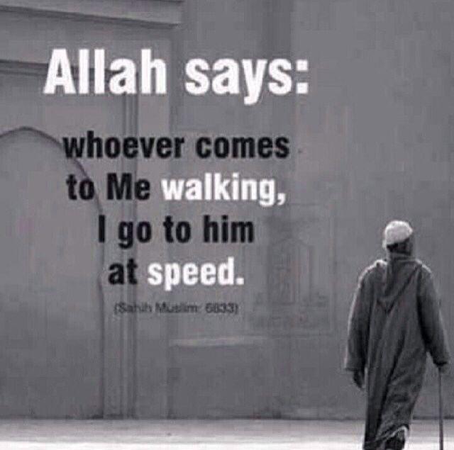 ☪ #Allah #SWT #Islam #Deen #Jannah #Religion #Truth #Muslim #Muslimah #Prophet #Muhammad #SAW #Guidance #Kabbah #Makkah #Revert