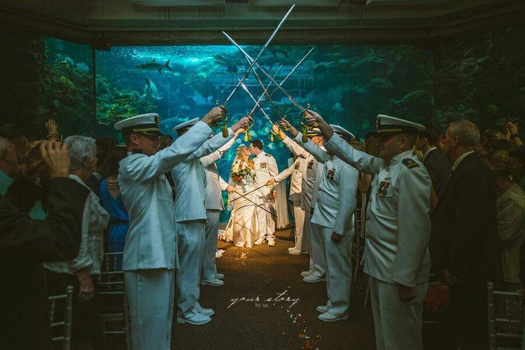 129 best images about aquarium wedding on pinterest