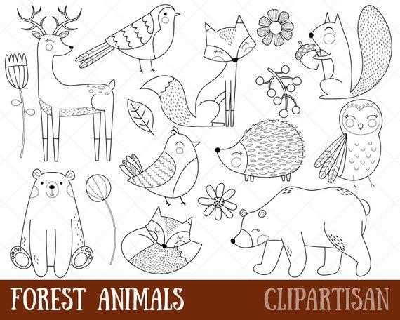 Woodland Animals Clipart Digital Stamps Black And White Line Art Forest Clipart Fox Bear Deer Owl Hedgehog Eps Digital Stamps Animal Clipart Animal Doodles