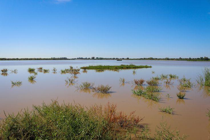 Le parc national de Doñana en Andalousie : L'Espagne comme vous ne l'avez jamais vue - Linternaute
