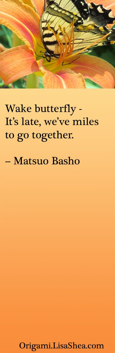 Wake Butterfly | lisashea #Quotation #Matsuo_Basho