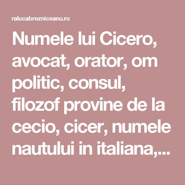 Numele lui Cicero, avocat, orator, om politic, consul, filozof provine de la cecio, cicer, numele nautului in italiana, latina. Cicero avea o excrescenta pe nas care semana cu un bob de naut. M-am uitat la statuile care il reprezinta pe filozof si n-am vazut nimic pe nasul sau, lucru care-l face sa scada in ochii mei, da dovada de narcisism.