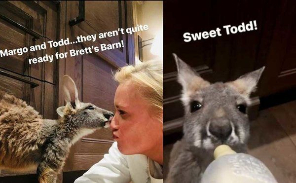 Luke and Caroline Bryan's Kangaroos Are Back (Kind Of)