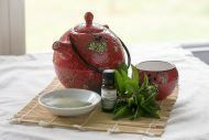 Green Tea and Peppermint Spray Ingredients
