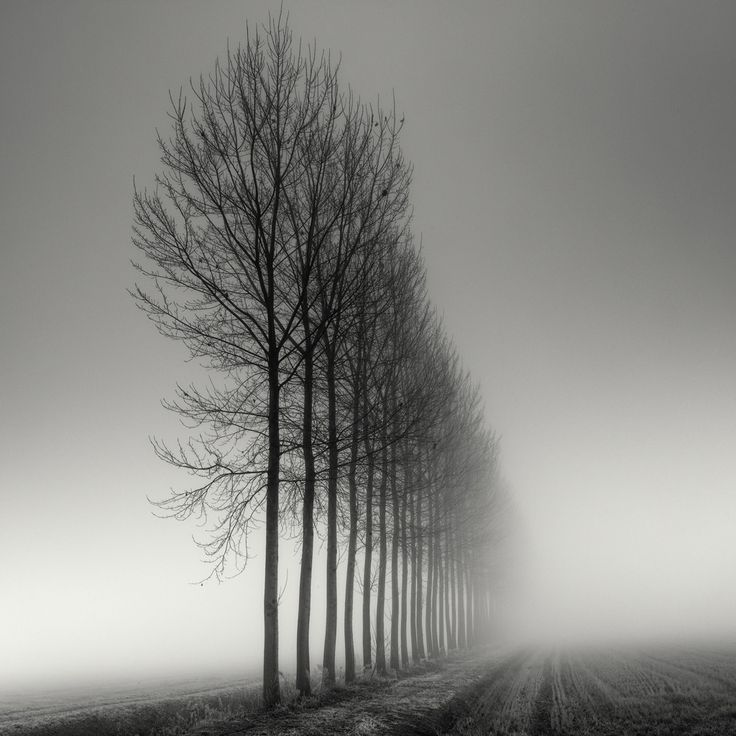 Aligned #photography by Pierre Pellegrini