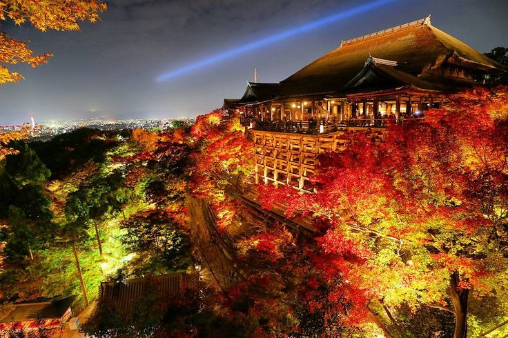 今日、京都『清水寺』秋の夜の特別拝観✨🍁✨ - 去年に比べて綺麗🍁(σ≧▽≦)σ - #京都#清水寺#寺##紅葉# #夜景#綺麗#絶景#夜#ライトアップ#紅葉ライトアップ#kyoto#beautiful#instacool#instagood#night#nightshot #nightview #nightout #Japanese#japan#igersjp #ig_japan #lovers_nippon#view#wonderful#temple #autumnleave#しゅうたぜっけい