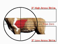 American Wild Game / Crossbow Hunting / How To Sight-In A Crossbow: