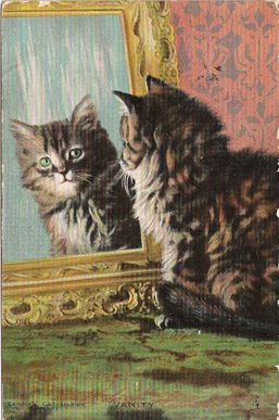 "Vintage Cat Postcard Gallery: Landor's Cat Studies Postcard Titled ""Vanity"""