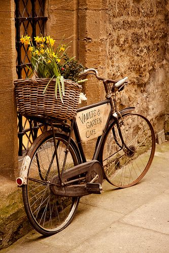 cafe sign on an old bicycle with basket - totally charming -: